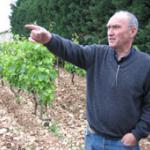Le Vigneron Alain Graillot