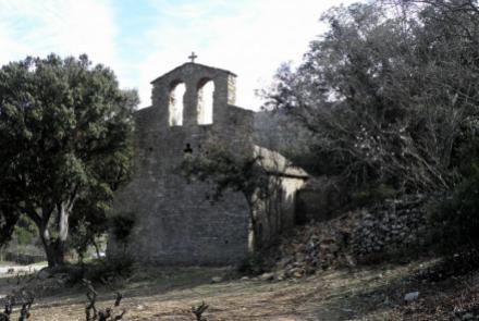 Cave Coopérative Castelmaure